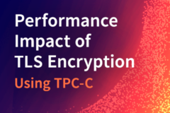 Measuring the Performance Impact of TLS Encryption Using TPC-C Preview